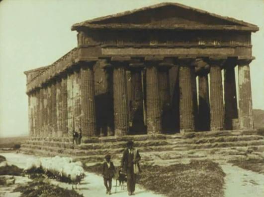 Attraverso la Sicilia - tempio e pecore